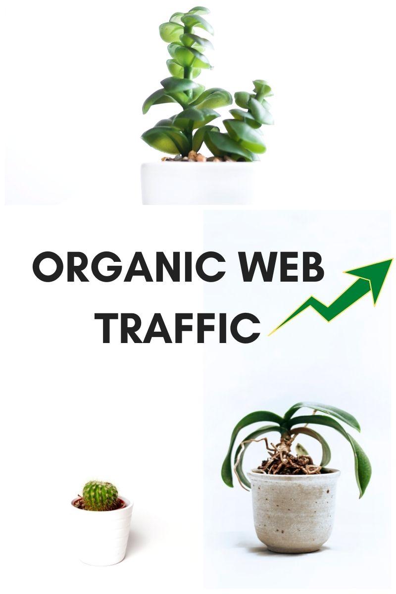 International Institute Of Digital Marketing™. Organic Web Traffic