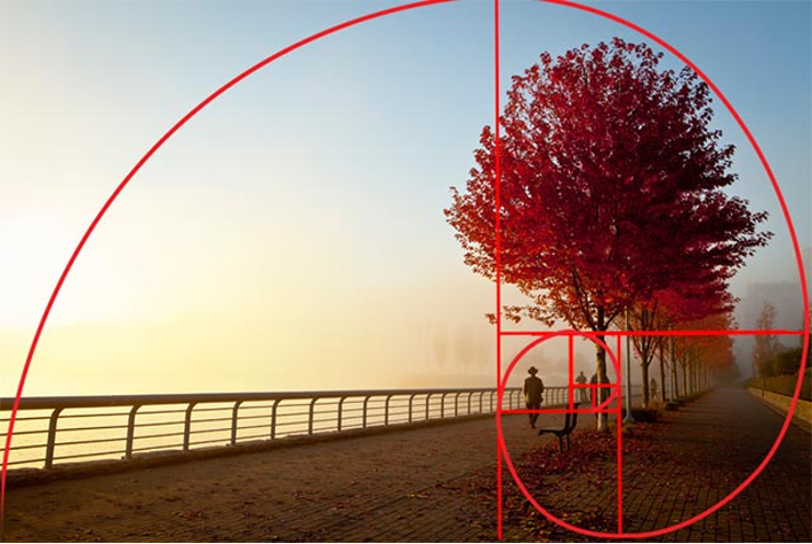 Spring Tree with Golden Ratio